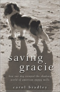 Saving Gracie bookjacket