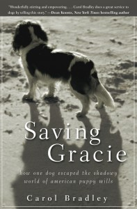 SavingGracie Revised Cover